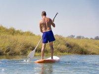 桨冲浪桨冲浪卡内拉岛卡内拉岛卡内拉岛桨冲浪