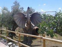 Elefante decoracion del parque