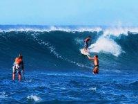 划桨冲浪和冲浪