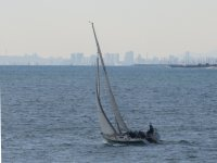 Viu Sailing Logo