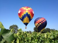 Balloons between the vineyards