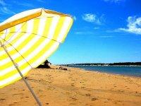 在沙滩上的阳伞