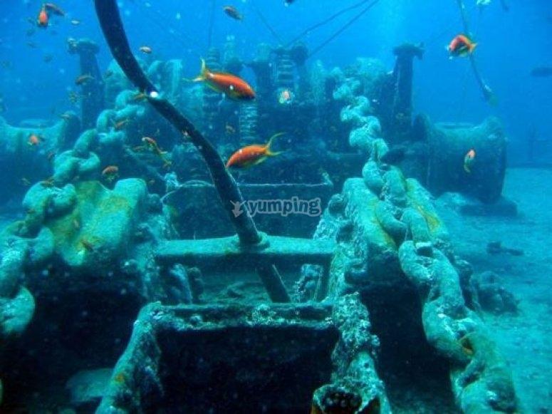Un museo subacuático