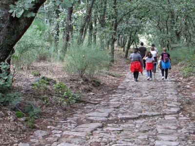 Creaocio Extremadura Campamentos Multiaventura