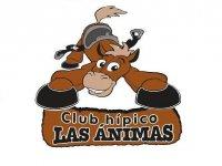 Club Hipico las Animas Rutas a Caballo