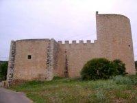 Castillo de la zona