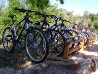 Disfruta de Castellon en bicicleta