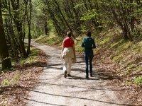 Caminando en el camino