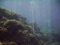 Burbujas marinas