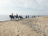 Paseando a caballo en la orilla del mar