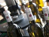 Elaborazione di vini e champagne