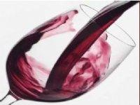 Disfruta de los mejores vinos