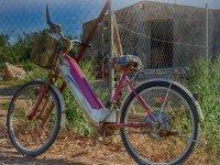 自行车轮常规电动自行车由塞维利亚