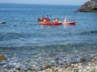 Nadando entre los kayak