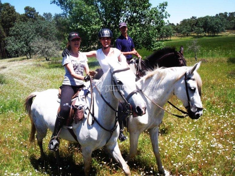 享受马匹的世界