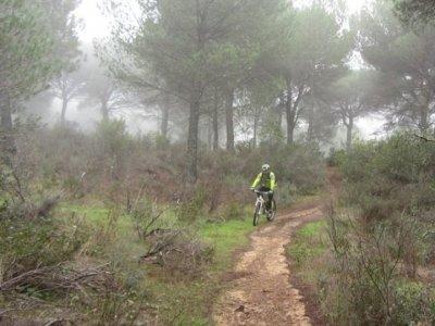 Quercus Route BTT