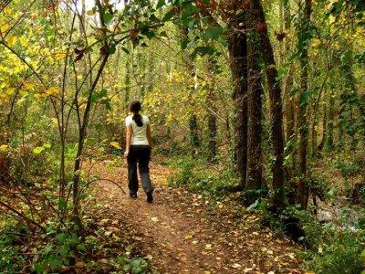 Quercus Route
