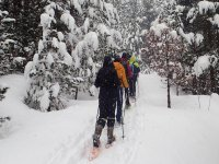 Siguiendo la fila de las raquetas en la nieve