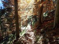 Rutas de media montana de senderismo