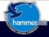 Hammersea Alicante