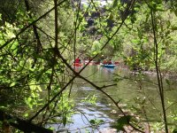 Canoes among the trees of Istan