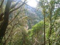 Montnegre自然公园的定位