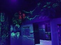Puerta en el laberinto laser