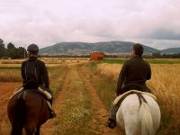 Excursions by horse in the Pyrenees