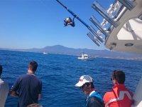 Fishing day in Marbella
