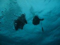 Explorando el lecho marino