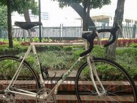 我们的自行车