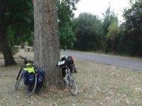 停放的自行车