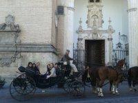 Visita las mejores ciudades andaluzas en carro de caballos
