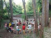 Asamblea en el bosque