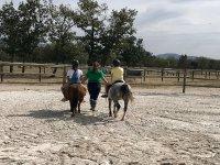 Actividades con ponis