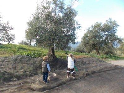 Senderos de Córdoba Visitas Guiadas
