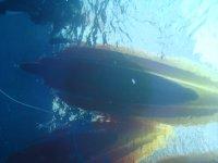 Kayak from below