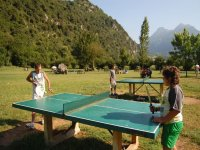 Pin pong in natura