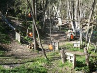 Campo di paintball nella foresta