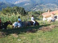 在Picos de Europa骑马