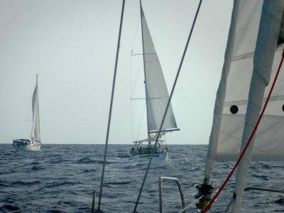 Alquiler de veleros Argosailing