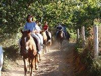 骑马在阿利昂达斯在阿斯图里亚斯
