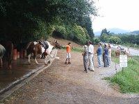 Spiegazioni precedenti sull'equitazione
