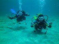 赫罗纳潜水经验
