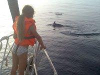 奥卡坚持看小海豚