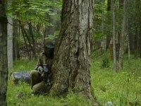 Escondido detrás de un árbol