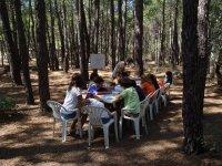 Clases de ingles en el bosque