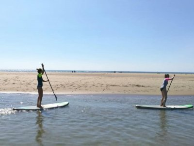 Ocean Beach Center Paddle Surf