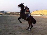 rutas con caballos