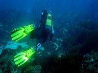 nadando por el fondo marino